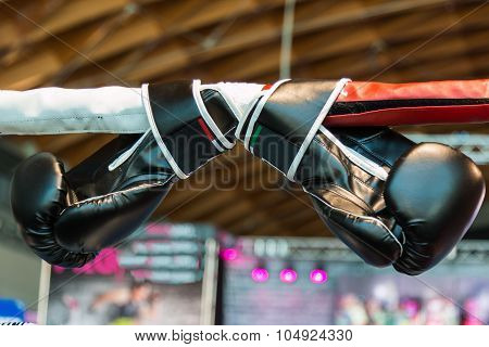 Black Boxing Gloves Linked To Ring Ropes
