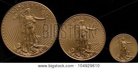 American Gold Eagles Small, Medium Large Black Background