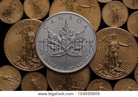 Canadian Silver Maple Coin Over Bed Of Gold Eagle Coins
