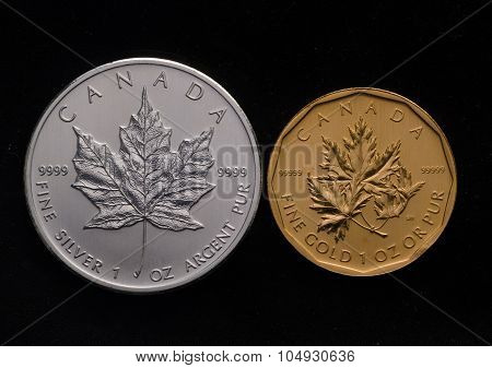 Canadian Silver Maple Vs. Canada Gold Maple Leaf