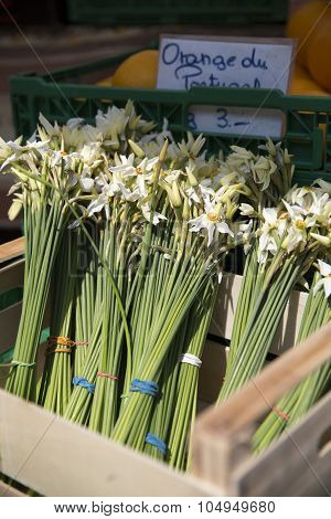 Narcissus for sale in a crate on the market