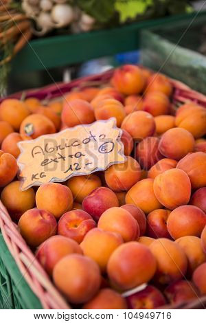 Close up view of apricots on the market