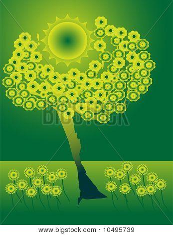 Tree engulfing the sun