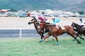 horses racing at the champs de mars port louis mauritius *** Note, slight graininess, best at small sizes. poster