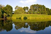 symmetric reflection in lake in summer green park poster