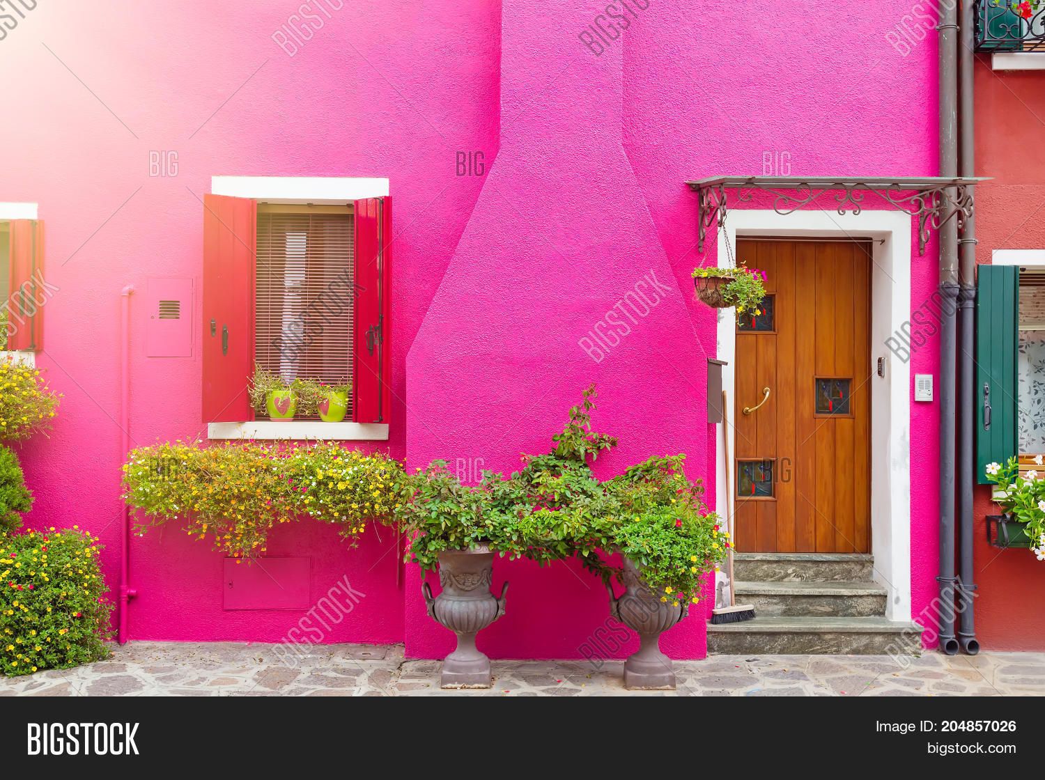 Pink House Flowers Image & Photo (Free Trial) | Bigstock