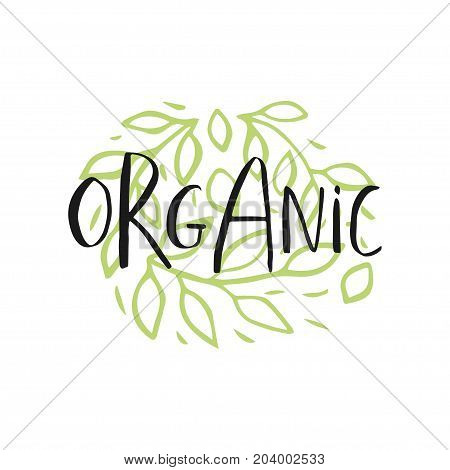 Vector Eco, Bio Green Logo Or Sign. Vegan, Raw, Healthy Food Bad