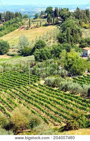 Tuscany Countryside, San Gimignano, Italy