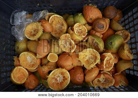 Many of the organic foods that are discarded in the box are oranges