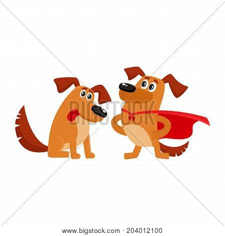 Two funny brown dog characters, one standing in superhero cape, another sitting and looking in admiration, cartoon vector illustration isolated on white background. Two funny house dog characters