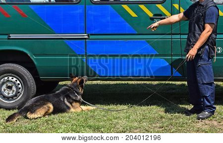 Police man with his dog next to the patrol car