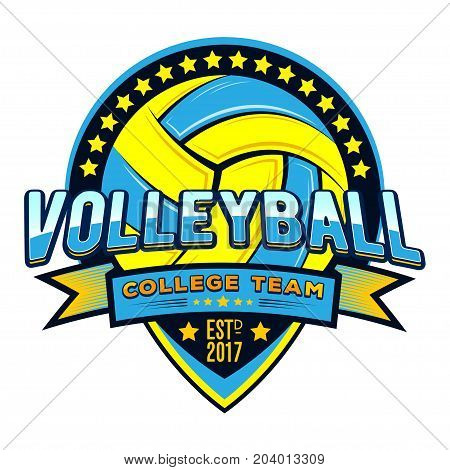 Vector volleyball logo for your unique design, printing in the press and T-shirts, publications on the Internet.