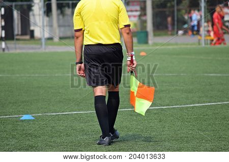 Soccer referee with a flag on the playing field