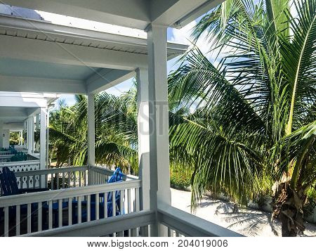 white fences on a balcony overlooking a grove of palm trees in Key West