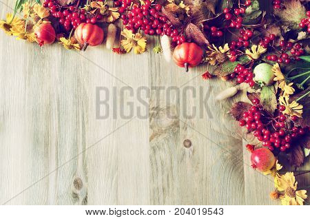 Thanksgiving day autumn background with seasonal autumn nature berries pumpkins apples and autumn flowers on the wooden background. Autumn Thanksgiving day still life with free space for text. Autumn Thanksgiving day background with copy space