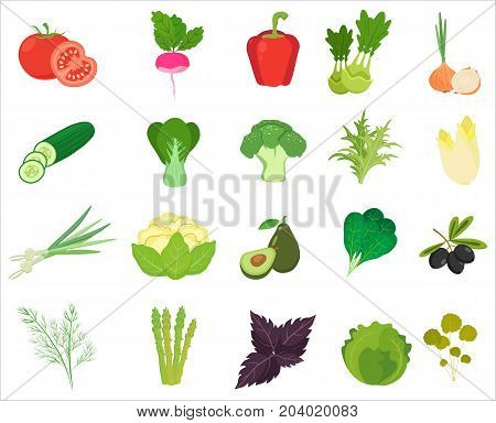 Fresh Vegetables and Herbs color flat icons isolated