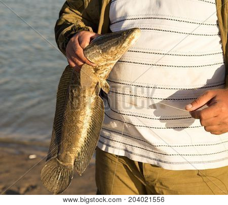 The fisherman caught the fish on a fishing pole .