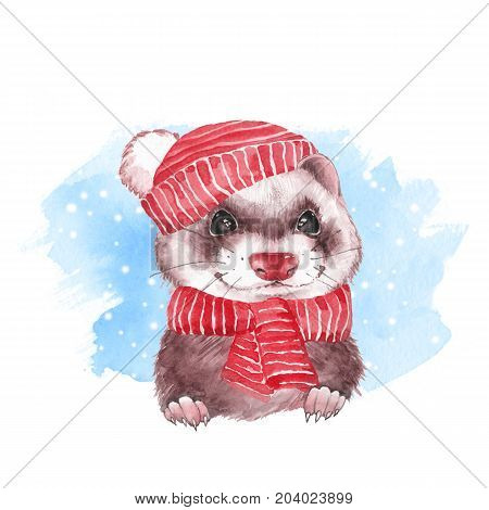 Cute ferret in hat. Watercolor illustration with snow