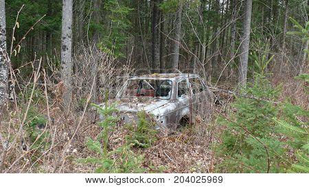 Bush destruction in Quebec. Canada north America