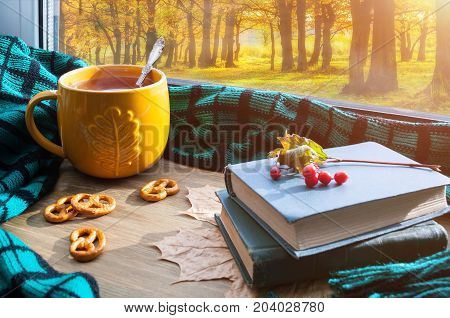 Autumn background - cup of tea cookies old books and plaid on windowsill and autumn scene outdoors. Autumn still life with concept of spending autumn time at cozy home Autumn still life.Sunny autumn still life. Autumn background