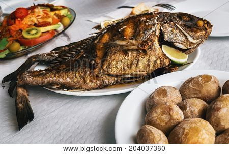 Grilled fish on plate canarian wrinkly potatoes and salad with vegetables and fruits. Tenerife Canary islands