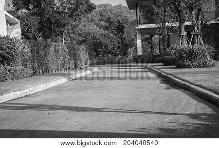 Landscape official, the road to a house with a yard on either side of a garden design. Photos black and white garden.