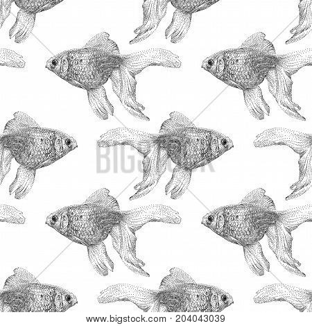 Vector seamless pattern with goldfish isolated on white background drawn by hand. Graphic drawing pointillism technique. Underwater world. Black and white animal illustration