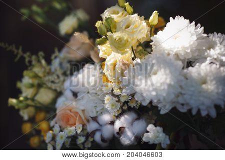 Bunch of fresh white and yellow flowers. Closeup photo.