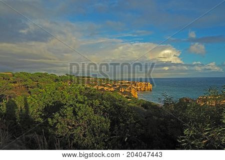 Sea Shore With Sandstone Cliff And Green Subtropical Vegetation