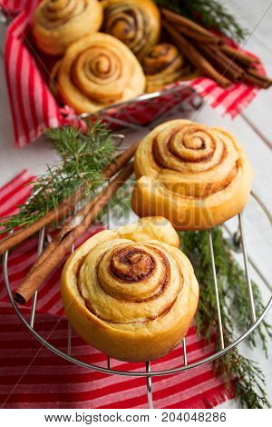 Traditional sweet homemade cinnamon rolls. Cinnamon buns against the background of fir branches and cinnamon sticks.