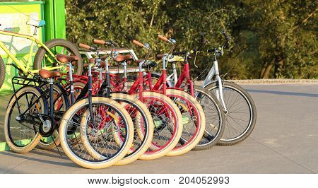 A group of colorful bicycles in a parking lot stand together on the asphalt in the park amidst the bright rays of the setting sun