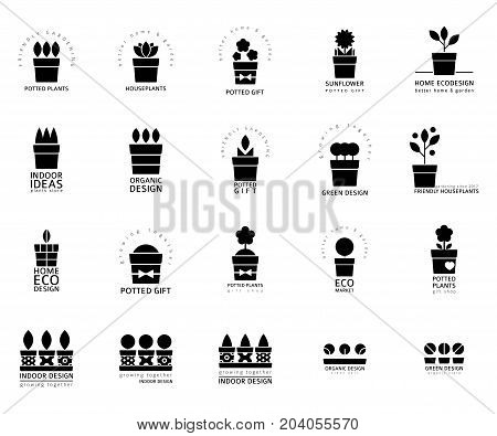 Vector set of logotypes for houseplants store or community, black and white