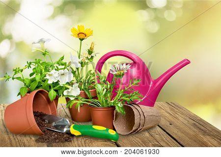 Garden utensil gardening utensils pot green fingers green