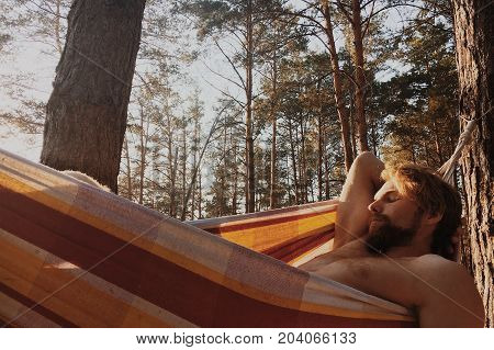 Guy with blonde hair and beard relaxing in the hammock in a wood