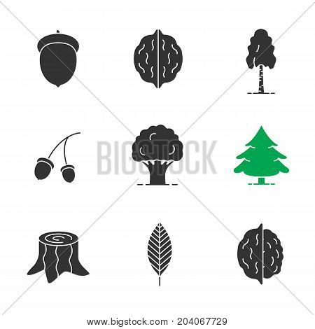 Forestry glyph icons set. Silhouette symbols. Acorns, walnut leaf, hazelnuts, birch, oak, fir trees, stump. Vector isolated illustration