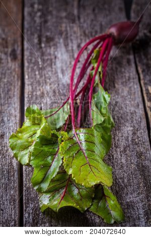 Young Beet With Tops On A Wooden Background, Vertically, Copyspace