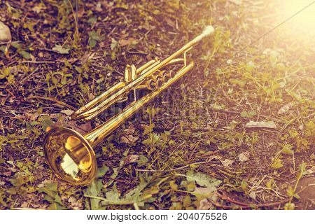 Golden Trumpet Placed On The Grass After The Concert. Vintage Tone