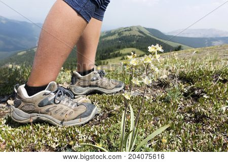 Picture of a hiker's legs on top of Jumpingpound Mountain, Alberta, Canada.
