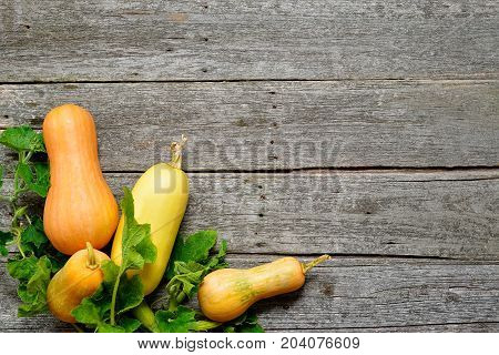 Pampkin And Zucchini With Green Leaves On Vintage Wooden Table. Autumn Harvest Background