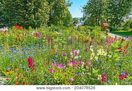 The Wildflower Meadow In Intercession Monastery Of Suzdal