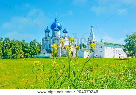 Suzdal Kremlin Through The Wildflowers