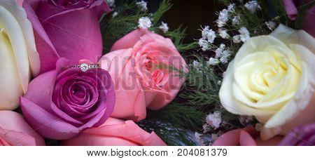 anillo de compromiso encima de unas rosas