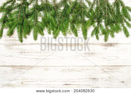 Christmas tree twigs on wooden background. Winter holidays concept