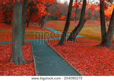 Autumn landscape with bare autumn trees and orange fallen autumn leaves. Autumn deserted alley. Cloudy autumn landscape scene of autumn park. Autumn landscape background