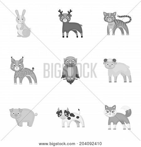 Zoo, toys, hunting and other  icon in monochrome style.Forest, nature, farm, icons in set collection.