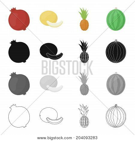 Red pomegranate, delicious melon, tropical pineapple fruit, ripe watermelon. Fruits set collection icons in cartoon black monochrome outline style vector symbol stock illustration .