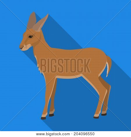 A young, wild antelope. A wild-footed animal of an antelope single icon in flat style vector symbol stock illustration .