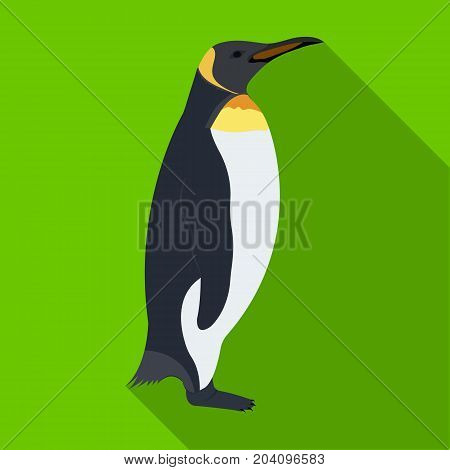 Penguin, flightless sea bird. The Imperial Penguin single icon in flat style vector symbol stock illustration .