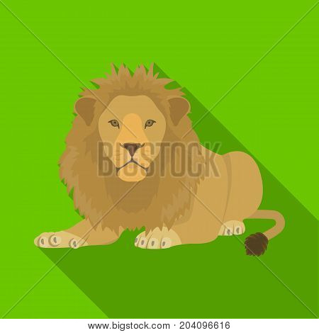 A lion, a wild and ferocious predator. Leo, the king of beasts single icon in flat style vector symbol stock illustration .