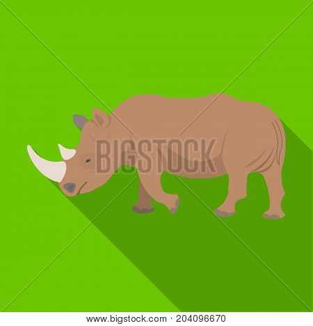 A large Indian rhinoceros. A wild animal, a rhinoceros single icon in flat style vector symbol stock illustration .